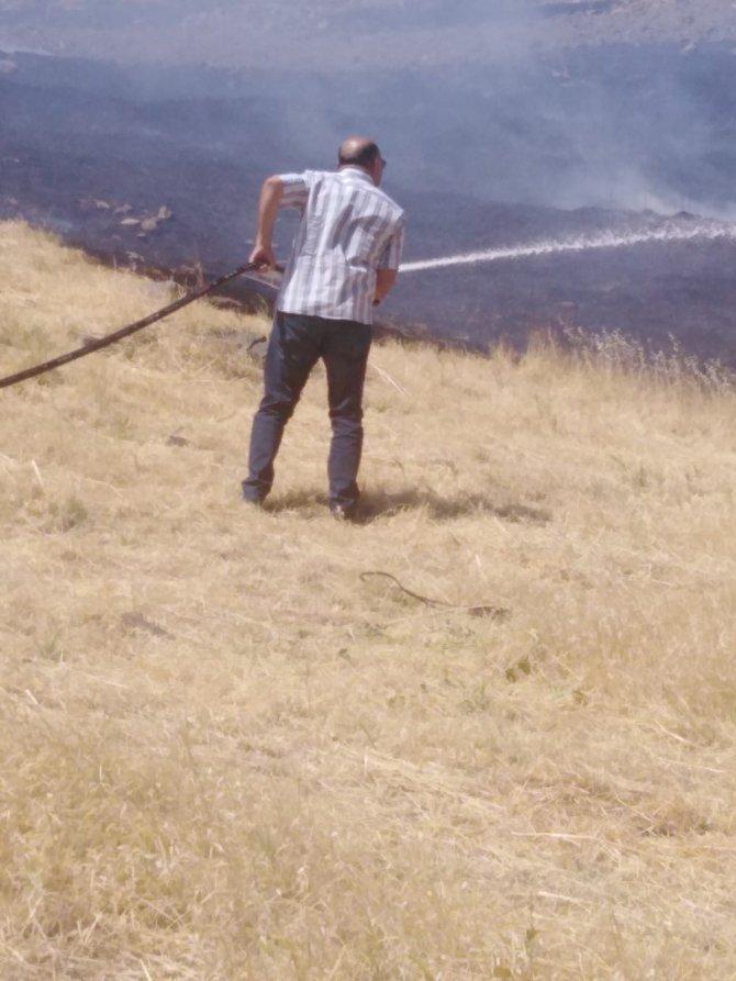 10 dönüm ormanlık alan yandı
