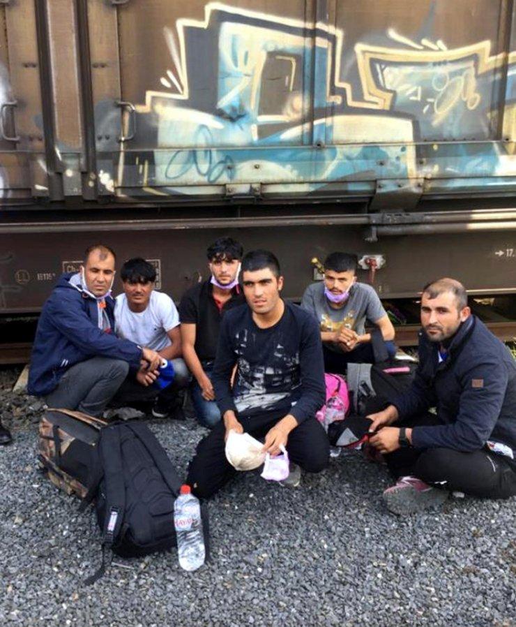 Afganistan uyruklu 6 kaçak göçmen yakalandı