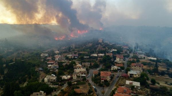 Bağcılar'dan Manavgat'a 20 bin adet fidan bağışı