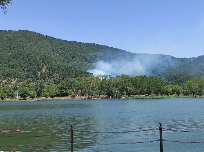 İzmir'de çıkan orman yangınına müdahale ediliyor