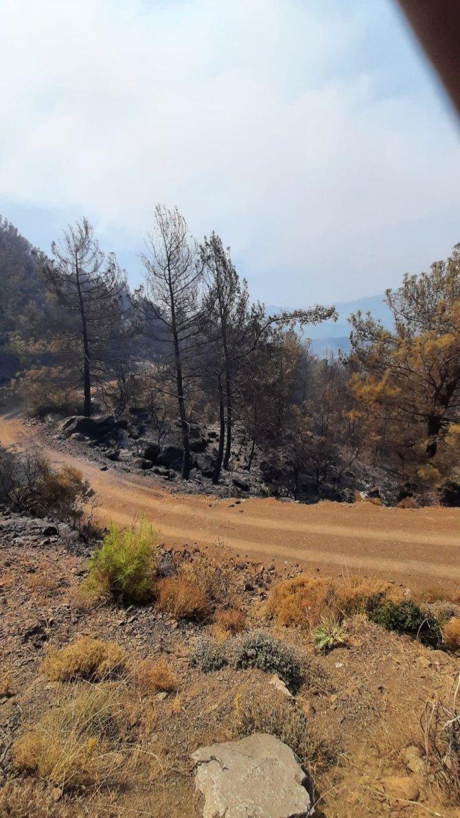Köyceğiz'deki orman yangını devam ediyor