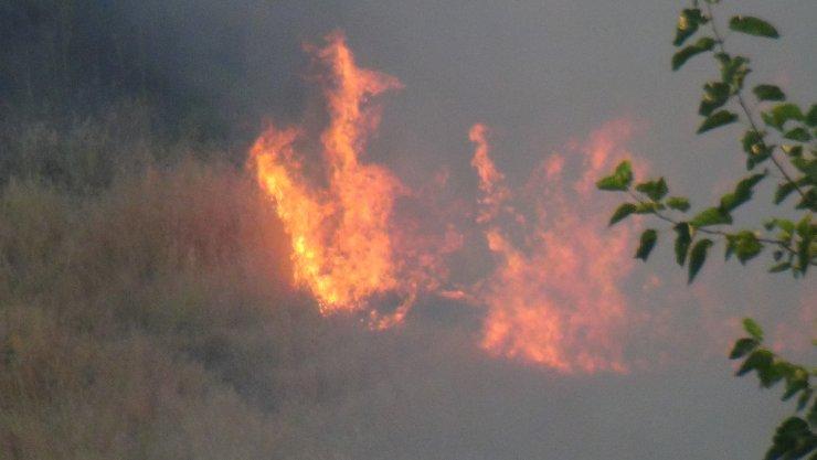 Adıyaman'da deredeki anız yangını söndürüldü