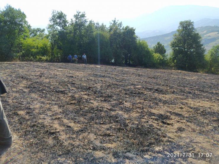 Anız yakan çiftçiye 2 bin 800 TL ceza