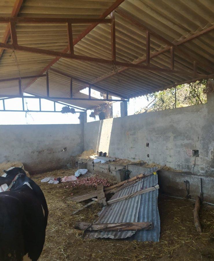 2 kadın soğan sererken çöken çatıdan düştü