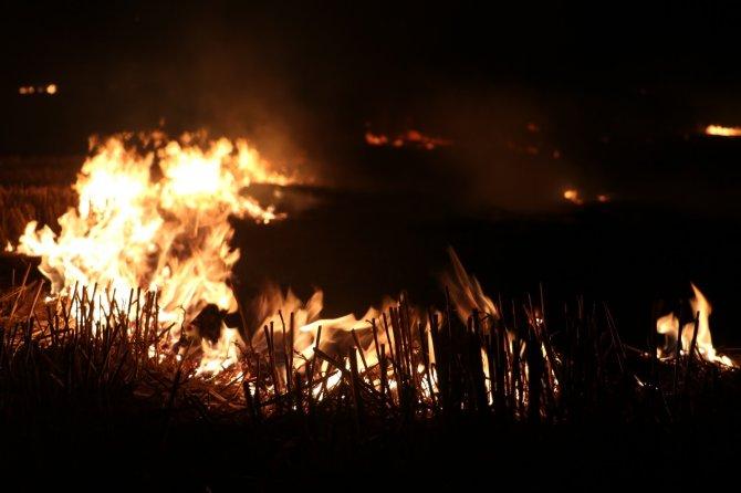 Anız yangını rüzgarın etkisiyle devasa boyuta ulaştı, ekili alanlar zarar gördü
