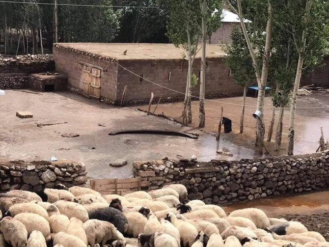 Yıldırım isabet eden çoban hayatını kaybetti