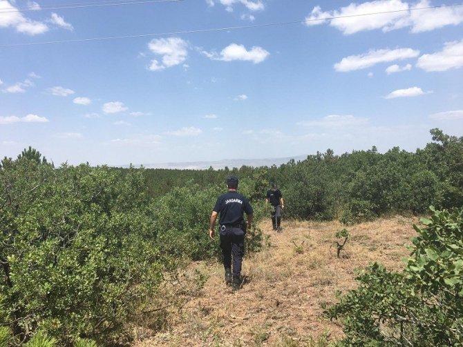 Eskişehir'de jandarma ormanlarla ilgili yasağı halka duyurdu