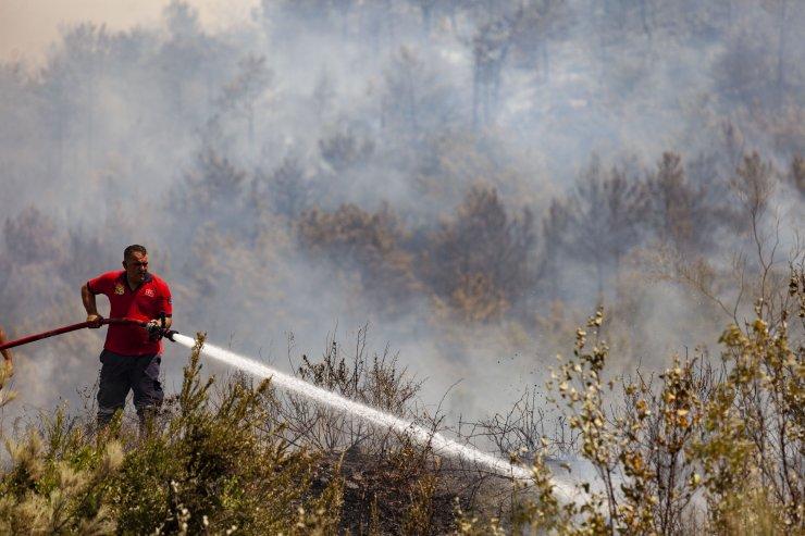 Mersin'deki orman yangınlarının tamamı kontrol altında