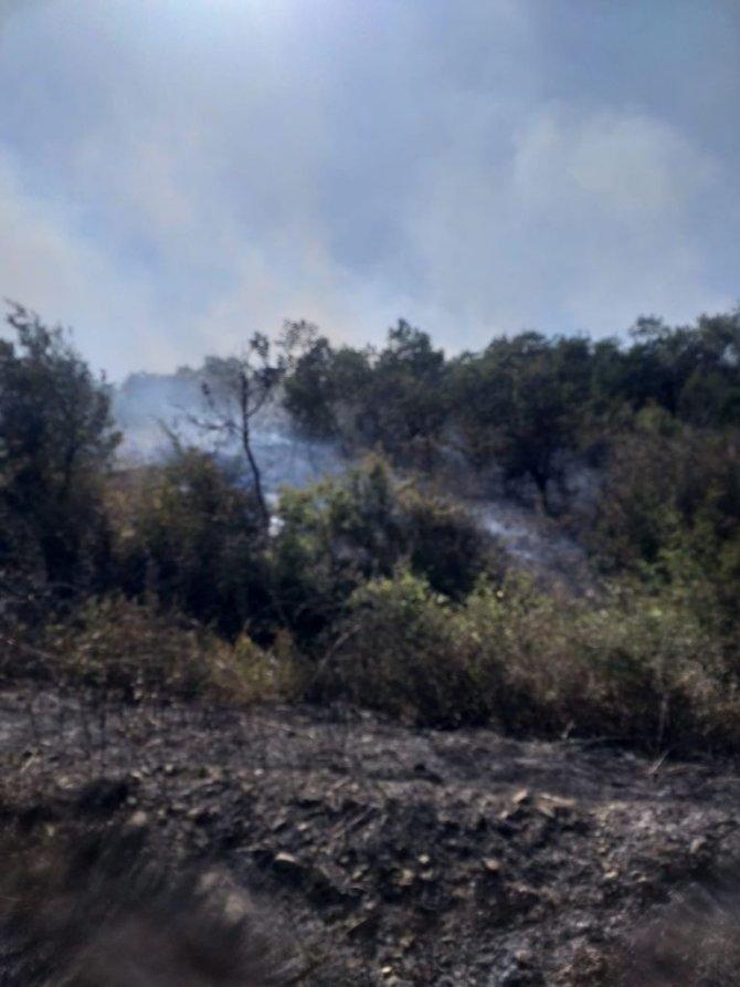 Alev alan biçerdöver ormanı yakıyordu