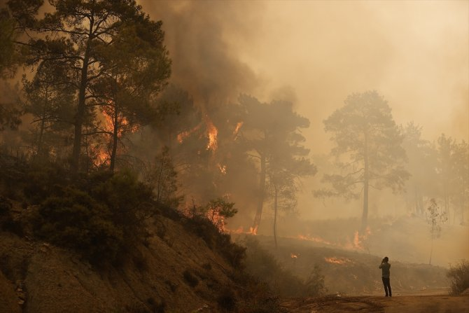 Manavgat'taki orman yangınlarına havadan ve karadan müdahale ediliyor