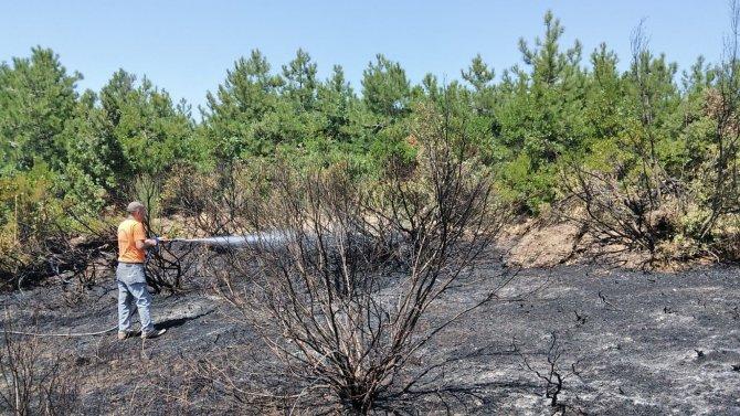 Tarlada çıkan yangın kısa sürede söndürüldü