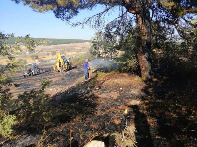 Orman yakınındaki ot yangını kısa sürede söndürüldü