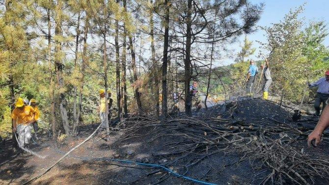 Orman yangını paniği