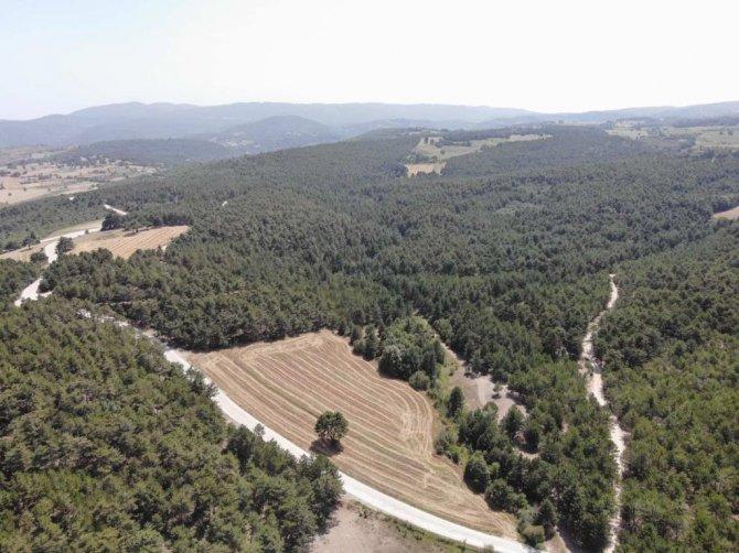 Jandarmadan ormanlık alanlarda dronlu denetim