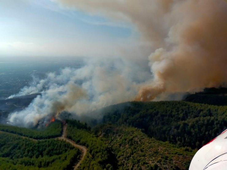 Orman yangınında 15 hektar alan zarar gördü