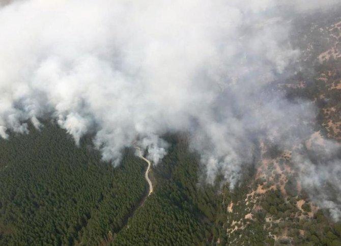 Yangınla mücadele hız kesmeden sürüyor