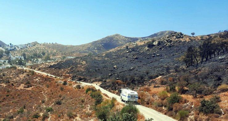 Bodrum'daki yangında 20 hektar makilik alan yandı