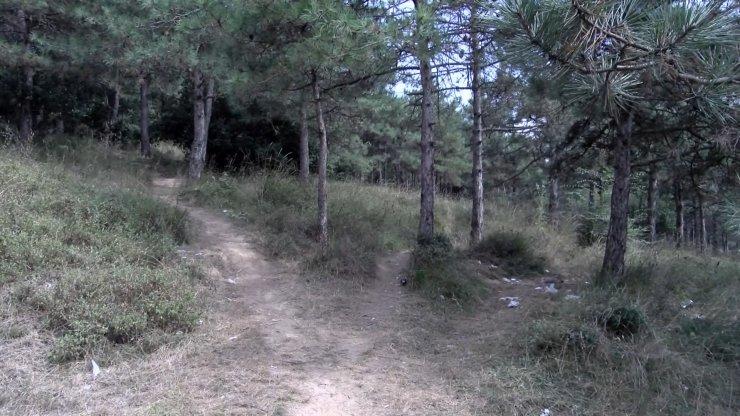 Ormanda kadın cinayeti