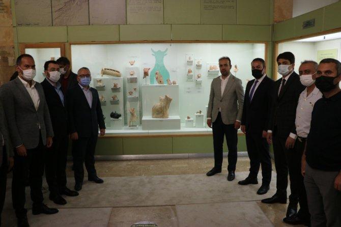 Tarihi kazılardan çıkan eserler müzede sergiye sunuldu