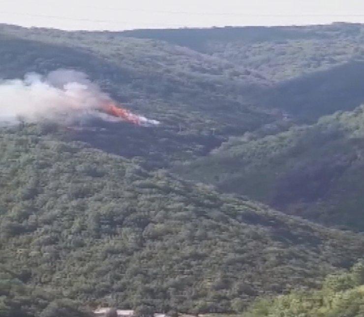 Aynı bölgede 3'üncü orman yangını