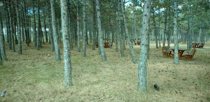 Orman ve mesire alanları hem havadan hem de karadan denetleniyor