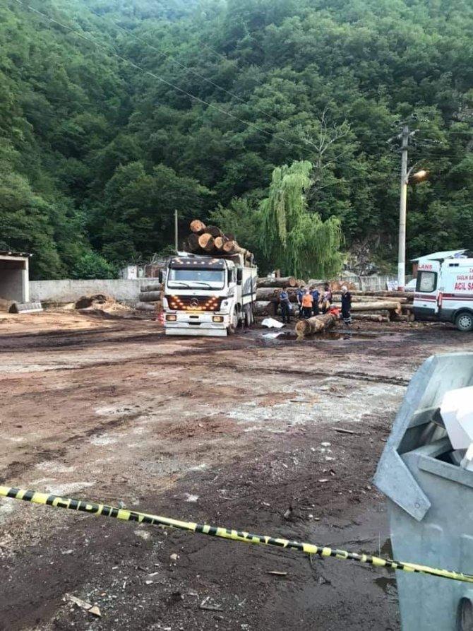 Üzerine tomruk düşen kamyon şoförü hayatını kaybetti