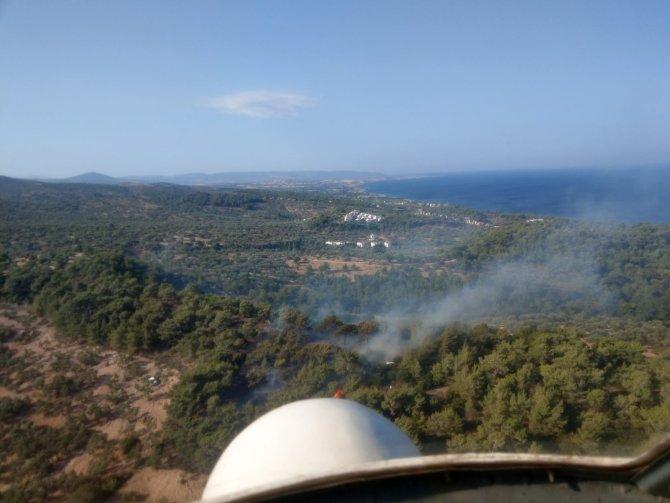 2 haftada 5'inci orman yangını