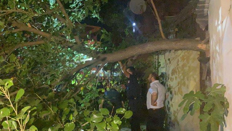 Ağacın üzerine devrildiği otomobil hasar gördü