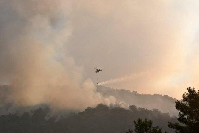 Aynı anda iki orman yangını çıktı
