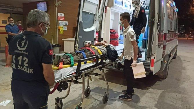 Motosiklet domuz sürüsüne daldı; 1 yaralı