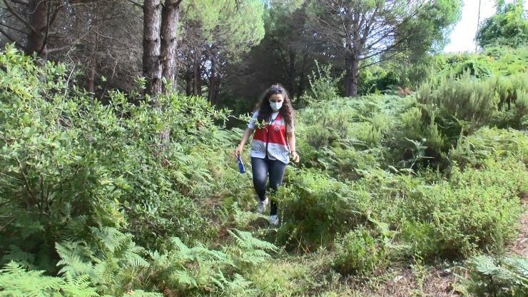 Ormanda drone destekli denetim