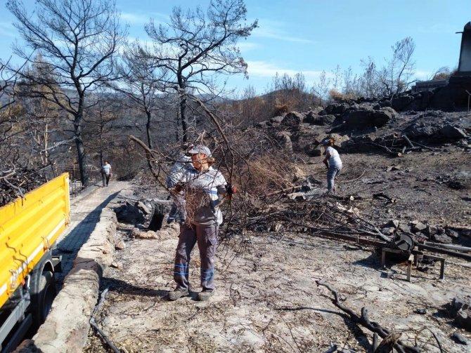 Yangın sonrası tehlike oluşturan ağaçlara müdahale edildi