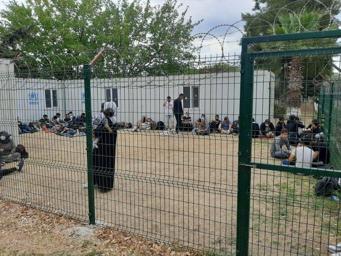 Yolcu otobüsü ve minibüste göçmen sevkiyatı jandarmaya takıldı