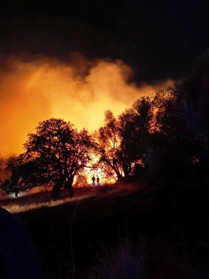 Yangın fırtınaya rağmen kısa sürede söndürüldü