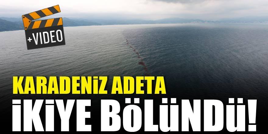 Karadeniz adeta ikiye bölündü