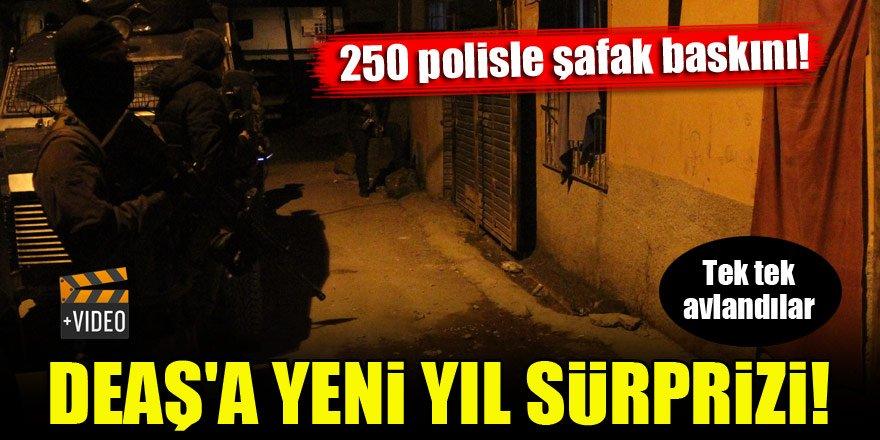 DEAŞ'a yeni yıl sürprizi! 250 polisle şafak baskını