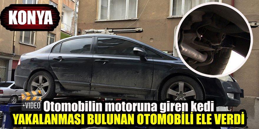 Konya'da otomobilin motoruna giren kedi, yakalanması bulunan otomobili ele verdi