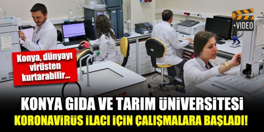 Konya Gıda ve Tarım Üniversitesi koronavirüs ilacı için çalışmalara başladı!