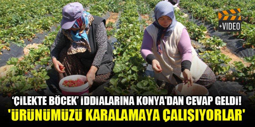 'Çilekte böcek' iddialarına Konya'dan cevap geldi!