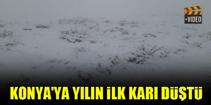 Konya'ya yılın ilk karı düştü