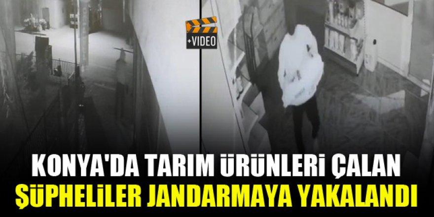 Konya'da tarım ürünleri çalan şüpheliler jandarmaya yakalandı